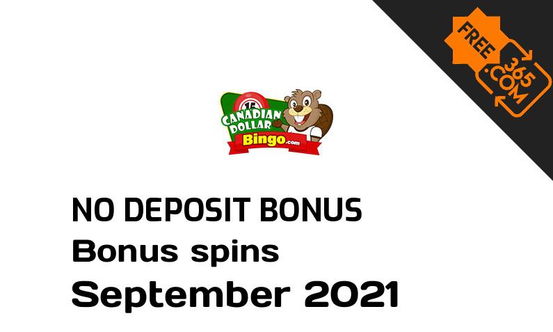 Latest Canadian Dollar Bingo bonus spins no deposit, 50 no deposit bonus spins